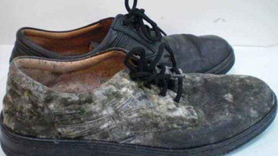如何从皮鞋上去除霉菌