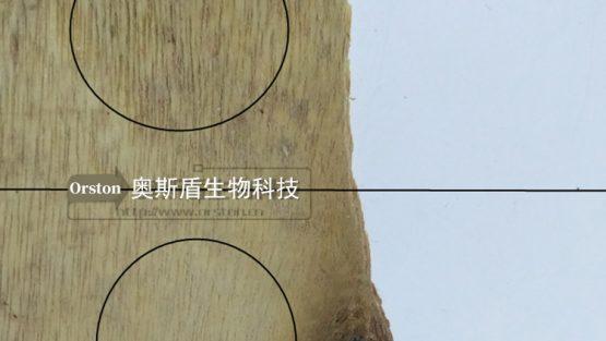 配合中纤板除霉剂把发霉的中纤板清洁干净